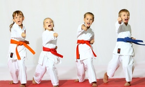 Keller's Tae Kwon Do: One or Two Months of Unlimited Tae Kwon Do Classes at Keller's Tae Kwon Do (Up to 83% Off)
