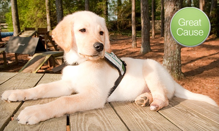 Canine Assistants - Golf Course Crooked Ck: $10 Donation for Puppy's Prosthetic Foot