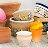 $10 for Ceramics and Painting at Wonkaramics
