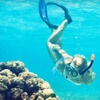 Up to 58% Off Snorkeling Tour of La Jolla Cove