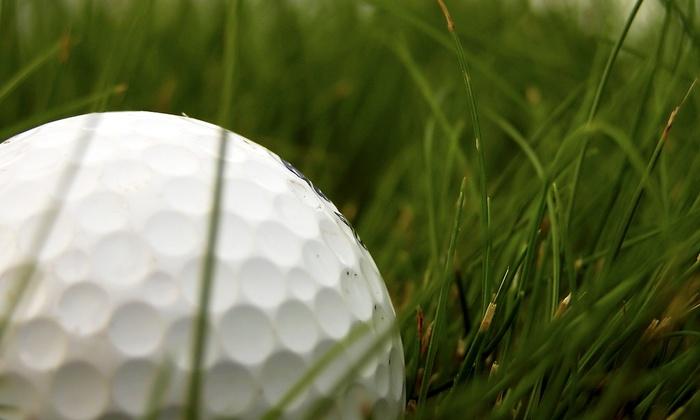 Putter Around Inc. - Pipers Glen: $65 for $130 Thirteen Karma Golf Grips Install  — Putter Around