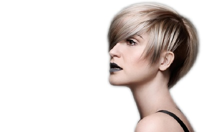 Haircut Packages at Dino Palmieri Salon & Spa (Up to 53% Off). Three Options Available.