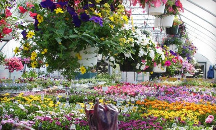 Everlast Nursery - West Tatnuck: $15 for $30 Worth of Plants and Garden Supplies at Everlast Nursery in Leicester