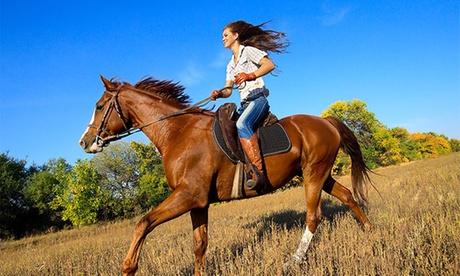 Paseo a caballo de 1 hora para dos o cuatro personas desde 29 €