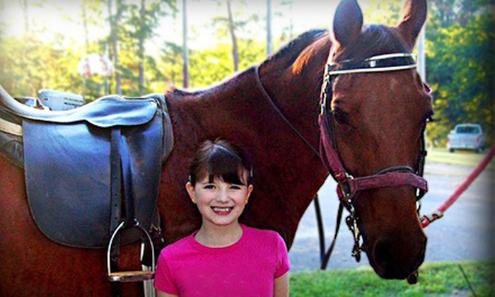 Irvine Training - 9: Three or Five 30-Minute Private Horseback-Riding Lessons at Irvine Training (Up to 53% Off)