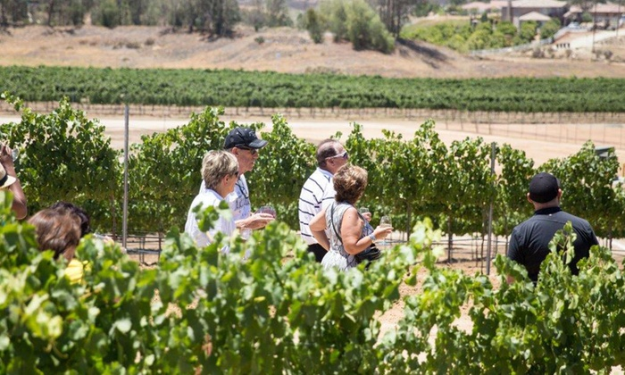 Danza del Sol Winery - Temecula: Winery and Vineyard Tour with Tastings for Two or Four at Danza del Sol Winery (Up to 55% Off)