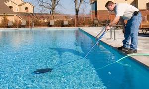 California Pool: One or Three Months of Pool Cleaning or One Pool-Filter Cleaning from California Pool (Up to 67% Off)