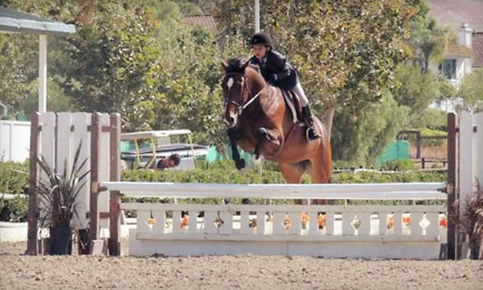 Vogel Equine - Costa Mesa: One or Three One-Hour Horse-Riding Lessons at Vogel Equine in Costa Mesa (Up to 56% Off)