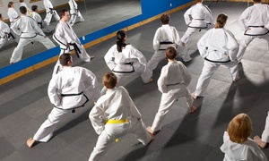 The One Taekwondo Center: Six or Twelve Taekwondo Classes for Ages 4–12 or 13 & Up with Uniform at The One Taekwondo Center (Up to 86% Off)
