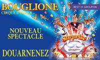 1 place pour enfant ou adulte, catégorie et date au choix pour la Tournée 2017 du cirque d'hiver Bouglionedès 10 €