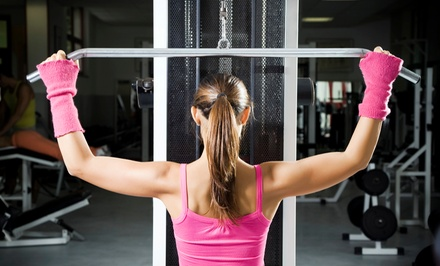 One- or Two-Month Gym Membership to Premier Sportsplex (Up to 59% Off)