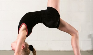 Rodina Elite Gymnastics Academy: Four 60-Minute Beginner Gymnastics or Tumbling Classes at Rodina Elite Gymnastics Academy (48% Off)