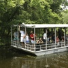 Up to 47% Off Swamp Tour