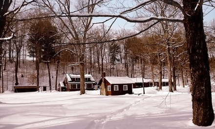 Groupon Deal: 1- or 2-Night Cabin Stay for Two with S'mores at Wellnesste Lodge in Taberg, NY. Combine Up to 10 Nights.