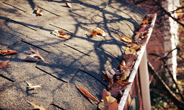 Kleen Roofs - Grand Rapids: 100, 200, or 300 Linear Feet of Gutter Cleaning from Kleen Roofs (Up to 60% Off)