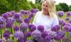 100 Allium Bulbs Collection