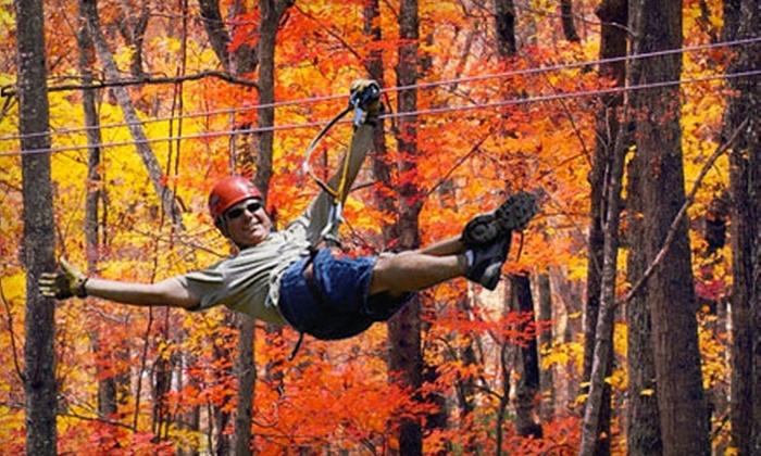 The Blue Ridge Canopy Adventure - Blue Ridge: $45 for an Autumn Zipline Canopy Tour at The Blue Ridge Canopy Adventure ($89.95 Value)