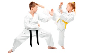 Weber's Martial Arts: $70 for $139 Worth of Martial-Arts Lessons at Weber's Martial Arts