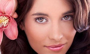 Waukesha Clinic of Electrolysis and Nails: Four or Six Microdermabrasion Treatments at Waukesha Clinic of Electrolysis and Nails (Up to 70% Off)
