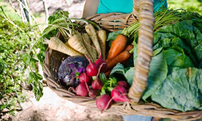 Village Organic Market - Suamico: Organic Groceries and Supplements at Village Organic Market (Up to 50% Off). Two Options Available.