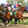 52% Off Horseracing Event for Four