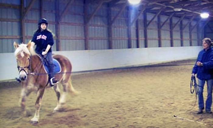 Shelby Trails Park Equine Education Center - Simpsonville: One or Three One-Hour Indoor Horseback-Riding Lessons at Shelby Trails Park Equine Education Center (Up to Half Off)