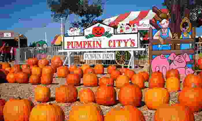 Pumpkin City's Pumpkin Farm - Pumpkin City's Pumpkin Farm (parking area at Laguna Hills Mall): $32 for Day of Fun with Rides, Petting Zoo, and Pumpkin Credit at Pumpkin City's Pumpkin Farm (Up to $62.40 Value)