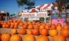 Pumpkin City's Pumpkin Farm - Laguna Hills: $32 for Day of Fun with Rides, Petting Zoo, and Pumpkin Credit at Pumpkin City's Pumpkin Farm (Up to $62.40 Value)