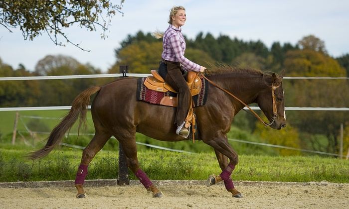 Banshee Ranch - Montgomery: Two or Four 60-Minute Private Riding Lessons at Banshee Ranch (Up to 56% Off)