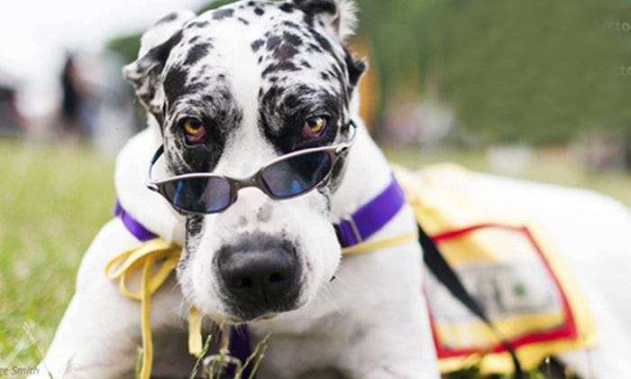 Trails for Tails 5k - Huntersville: $15 for Entry to the Trails for Tails 5K Run to Support Rescue Dogs ($30 Value)