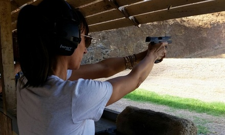 $75 for Basic Handgun Safety Course Registration for One ($125 Value)