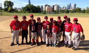 B.i.g. Baseball Academy: A Baseball-Training Session from B.I.G. Baseball Academy (64% Off)