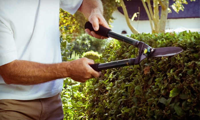 ProGrass - Lloyd District: $60 for Up to Three Man Hours of Tree and Shrub Pruning from ProGrass ($180 Value)