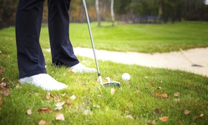 Brent Reneau at Accelerated Golf Academy: A One Hour Introductory Golf Lesson with Brent Reneau  (65% Off)