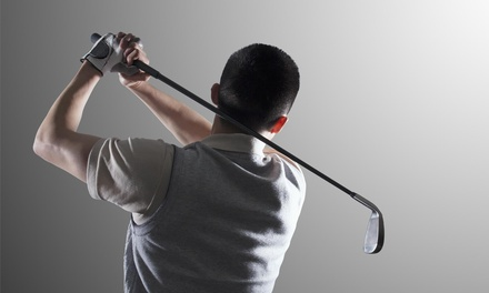 One-hour swing analysis at Golf Academy of the Northlands (54% Off)