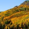 Shadow Ridge Resort Hotel in Utah with Stunning Mountainside Views