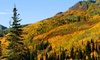 Shadow Ridge Resort Hotel and Conference Center - Park City, UT: 1- or 2-Night Stay with Optional Bottle of Wine at Shadow Ridge Resort Hotel and Conference Center in Park City, UT