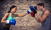 LaSalle Mixed Martial Arts - New York: 5 or 10 Fitness Classes with a 30-Minute Personal Training Session at LaSalle Mixed Martial Arts (Up to 78% Off)