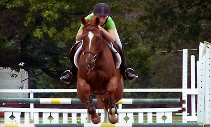Times Square Riding Academy - Brandon: Horseback-Riding Lessons at Times Square Riding Academy in Ortonville (Up to 57% Off). Four Options Available.