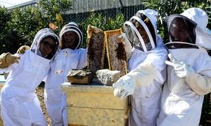San Francisco Honey & Pollen Company: Beekeeping Class with Honey Tasting at San Francisco Honey & Pollen Company (Up to 68% Off)