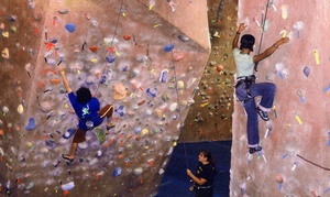 Vertically Inclined Rock Gym: Introductory Rock-Climbing Course for Two or Four at Vertically Inclined Rock Gym (Up to 49% Off)