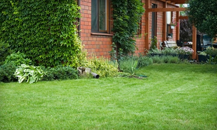 Limitless Lawn Service - Nashville: Lawn-care for Up to an Acre or Three Hours of Tree Services from Limitless Lawn Service (Up to 67% Off)
