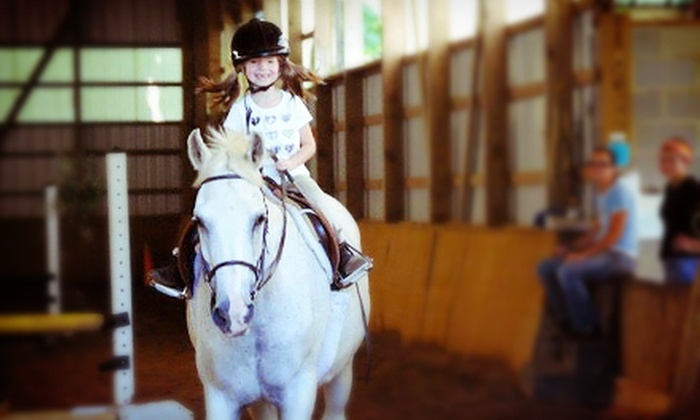 Loftmar Stables - Queen Anne: $49 for a 90-Minute Introductory Group Horseback-Riding Lesson at Loftmar Stables ($100 Value)