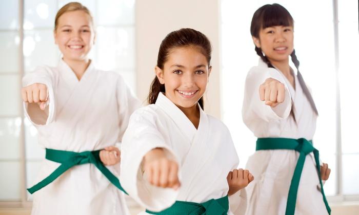 Lebanon Kickboxing & Martial Arts - Lebanon: $24 for $44 Worth of Karate and Kickboxing Classes — Lebanon Kickboxing & Martial Arts