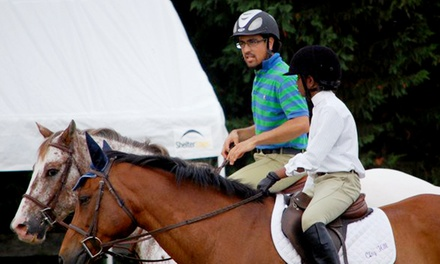 One or Two Beginner Horseback-Riding Lessons at Clay Hill Stables (Up to 48%Off)