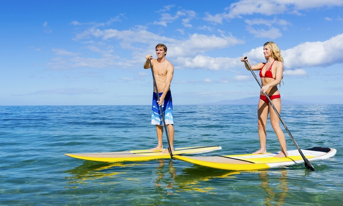 Sand Key Paddle Sports - Sand Key: One-Hour or Half-Day Paddleboard or Kayak Rentals for Two or Four at Sand Key Paddle Sports (Up to 57% Off)