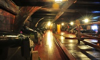 The Golden Hinde II: Golden Tour for One, Two or a Family (Up to 43% Off)