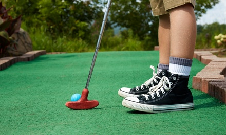 Unlimited Mini Golf for Four or Six People at Skate Zone Family Fun Center (50% Off)