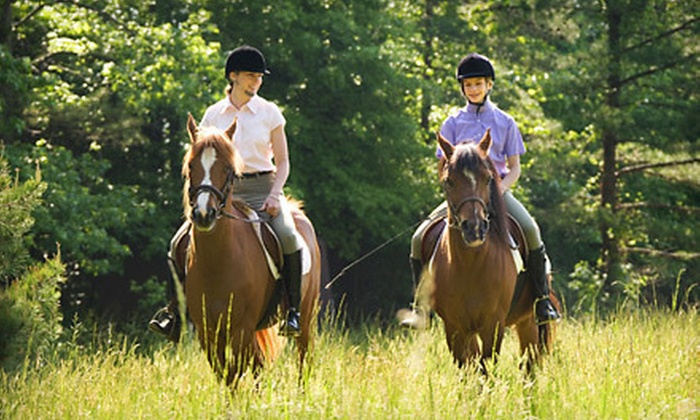 DCW Riding Instruction - Baytown: Two or Four 60-Minute Horseback-Riding Lessons at DCW Riding Instruction in Stillwater (Half Off)