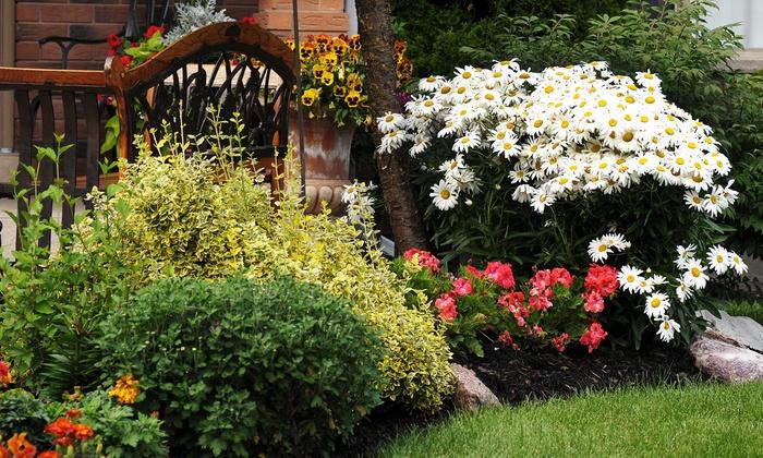 Taulman Services LLC - Orlando: $50 for $125 Worth of Landscaping Servces from Taulman Services LLC